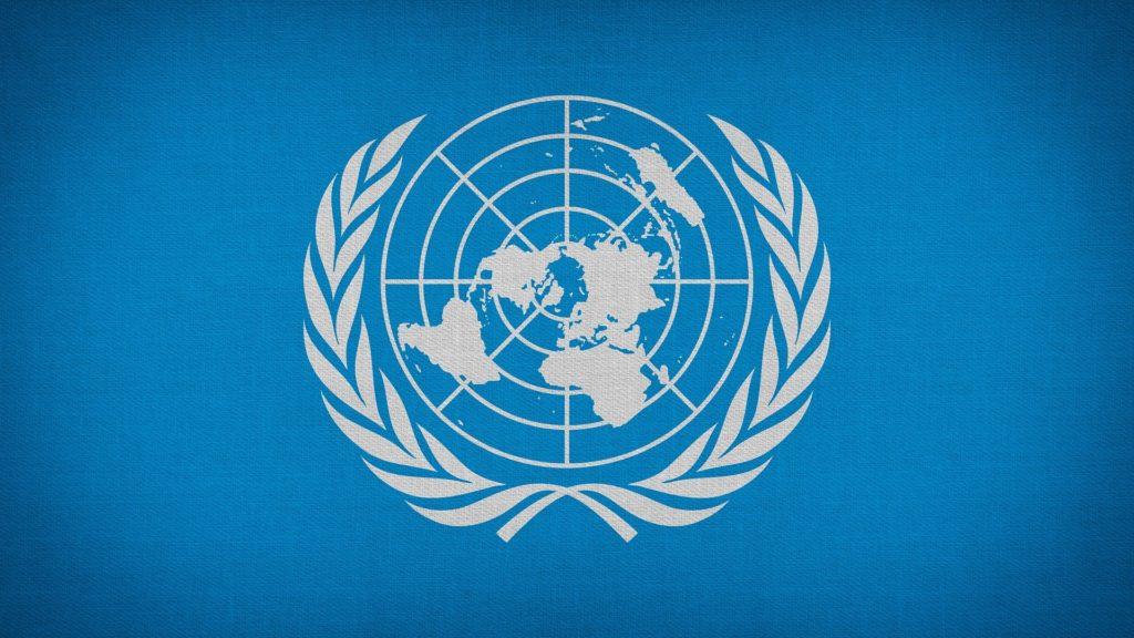 Femina Politica – Zeitschrift für feministische Politikwissenschaft 1-2020: Das Genderregime als wirkmächtige verborgene Institution in der Friedens- und Sicherheitsarchitektur der Vereinten Nationen